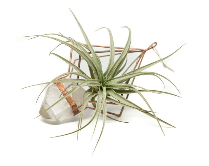 Copper Quartz Crystal Air Plant Holder/Sun Catcher