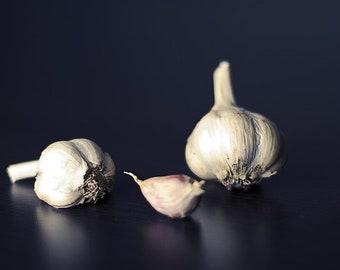 Garlic 100% Pure Essential Oil