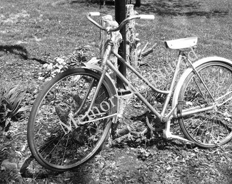 Vintage Retro Bike Fine Art Photo Black & White Photography Digital Download Bicycle Wall Decor Sports Theme