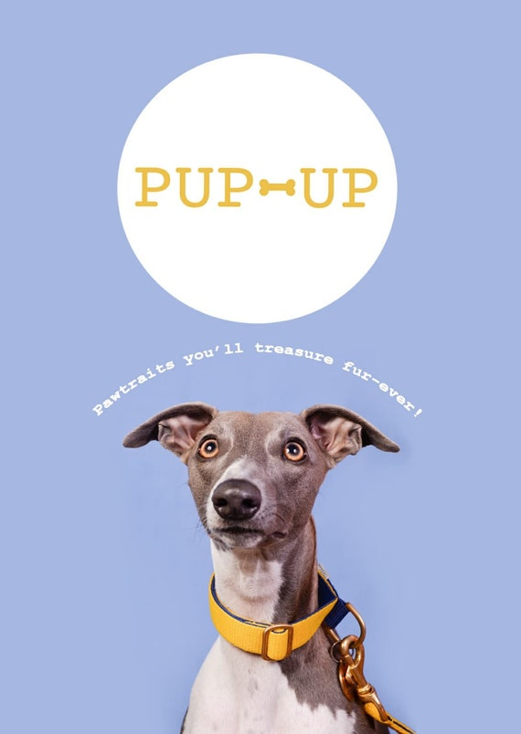 Pup Up Dog portrait photography session