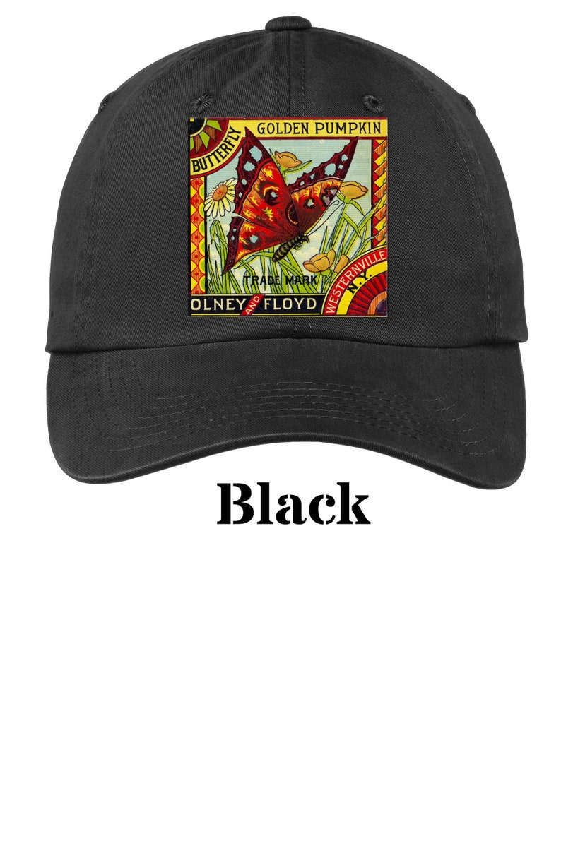 861ff1e37 Butterfly Golden Pumpkin Ad Cap Dad Baseball Trucker Hat Mens or Womens  Ball Caps 13 Colors Pink Black Red Blue Orange Green Khaki
