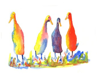 Paintings of ducks, colourful duck pictures, Indian Runner art, Indian Runner Duck pictures, Duck pictures, Duck wall art from dylshouse.