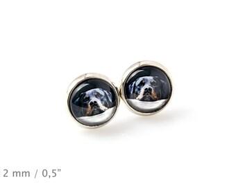 Rottweiler. Pet in your ear. Earrings. Photojewelry. Handmade.