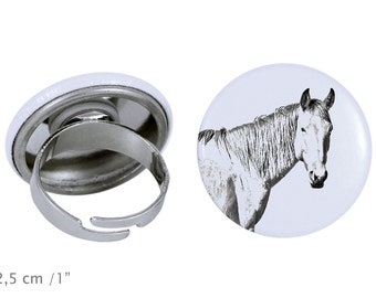 Ring with a horse - Namib Desert Horse