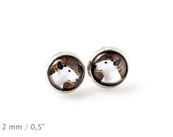 Bull Terrier. Pet in your ear. Earrings. Photojewelry. Handmade.