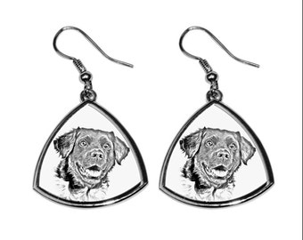 Stabyhoun- NEW collection of earrings with images of purebred dogs, unique gift