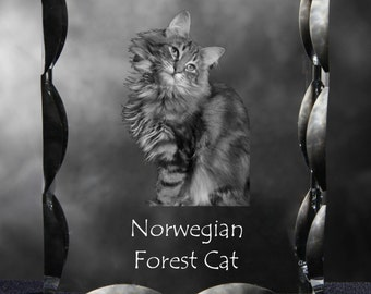 Norwegian Forest cat , Cubic crystal with cat, souvenir, decoration, limited edition, Collection