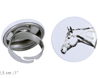 Ring with a horse - American Quarter Horse