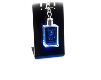 Bernese Mountain Dog, Dog Crystal Keyring, Keychain, High Quality, Exceptional Gift . Dog keyring for dog lovers