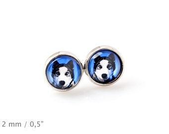 Siberian Husky. Pet in your ear. Earrings. Photojewelry. Handmade.