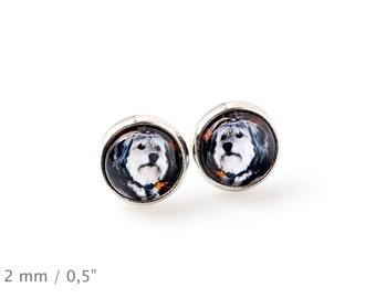Polish Lowland Sheepdog. Pet in your ear. Earrings. Photojewelry. Handmade.