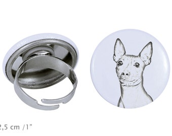 Ring with a dog- American Hairless Terrier
