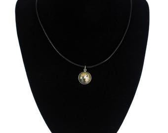 Alaskan Malamute, pendant for people who love dogs. Photojewelry. Handmade.