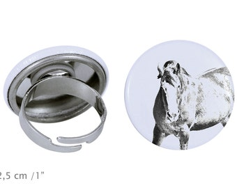 Ring with a horse - Clydesdale