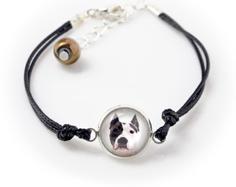 American Staffordshire Terrier. Bracelet for people who love dogs. Photojewelry. Handmade.
