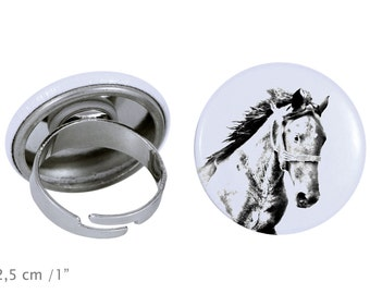 Ring with a horse - Mustang