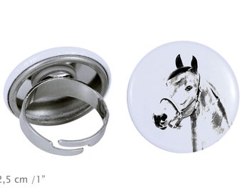Ring with a horse - Morgan horse