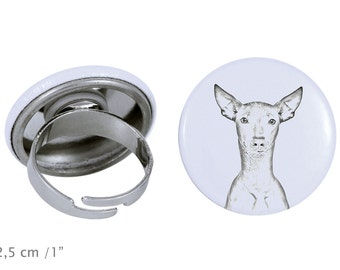 Ring with a dog- Peruvian Hairless Dog