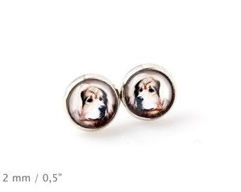 Tibetan Mastiff. Pet in your ear. Earrings. Photojewelry. Handmade.
