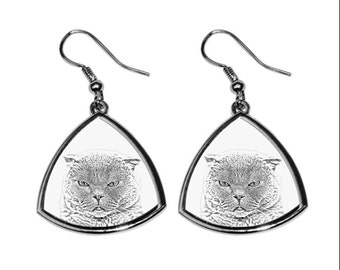 Scottish Fold, collection of earrings with images of purebred cats, unique gift. Collection!