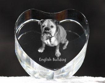 Bulldog, English Bulldog, crystal heart with dog, souvenir, decoration, limited edition, Collection