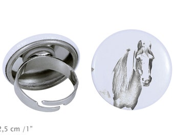 Ring with a horse - Fell pony