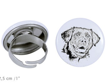 Ring with a dog- Stabyhoun