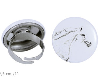 Ring with a horse - Czech Warmblood