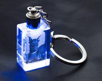Doberman, Dog Crystal Keyring, Keychain, High Quality, Exceptional Gift . Dog keyring for dog lovers