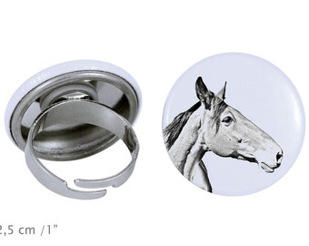 Ring with a horse - Australian Stock Horse