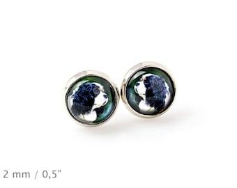 Cavalier King Charles Spaniel. Pet in your ear. Earrings. Photojewelry. Handmade.