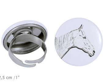 Ring with a horse - Retired Race Horse
