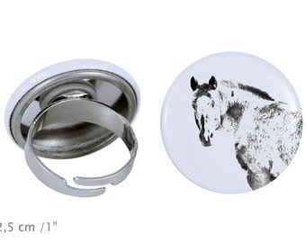 Ring with a horse - Appaloosa