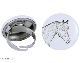 Ring with a horse - Bay