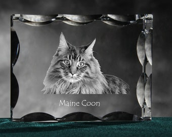 Maine Coon , Cubic crystal with cat, souvenir, decoration, limited edition, Collection