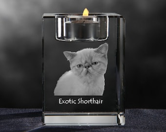 Exotic Shorthair, crystal candlestick with cat, souvenir, decoration, limited edition, Collection
