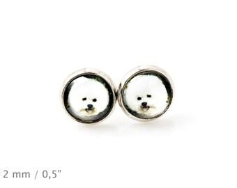 Bichon Frise. Pet in your ear. Earrings. Photojewelry. Handmade.