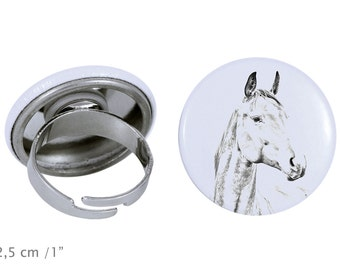 Ring with a horse - American Warmblood