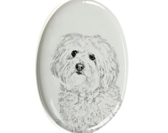 Bolognese - Gravestone oval ceramic tile with an image of a dog.