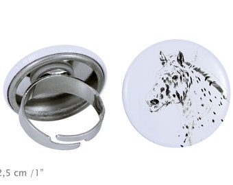 Ring with a horse - Noriker