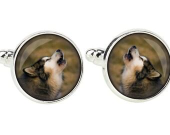 Alaskan Malamute. Cufflinks for dog lovers. Photo jewellery. Men's jewellery. Handmade