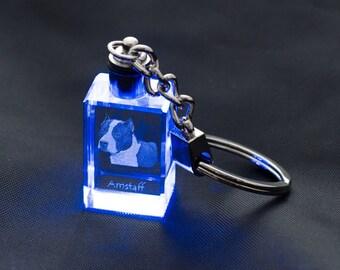 Amstaff, Dog Crystal Keyring, Keychain, High Quality, Exceptional Gift . Dog keyring for dog lovers