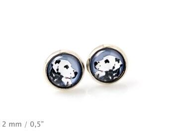 Dalmatian. Pet in your ear. Earrings. Photojewelry. Handmade.