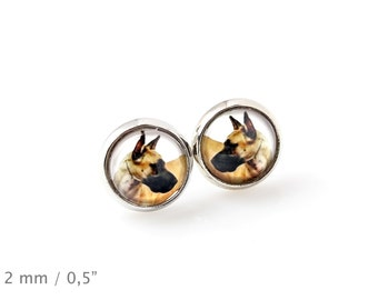 Great Dane. Pet in your ear. Earrings. Photojewelry. Handmade.