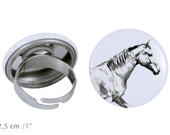 Ring with a horse - Selle français