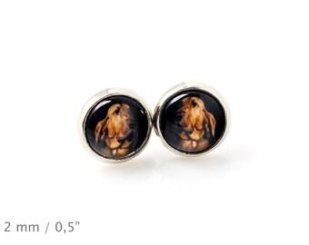 Bloodhound. Pet in your ear. Earrings. Photojewelry. Handmade.