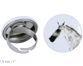 Ring with a horse - Barb horse