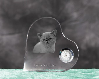 Exotic Shorthair - crystal clock in the shape of a heart with the image of a pure-bred cat.