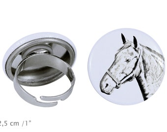 Ring with a horse - Danish Warmblood