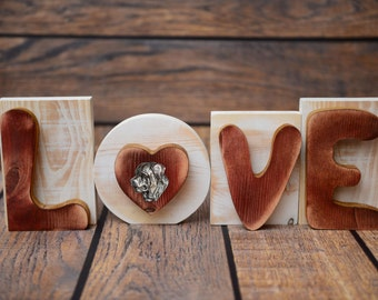 """Wooden sign LOVE great decoration! Purebred dog in the letter """"O"""" - Tosa"""